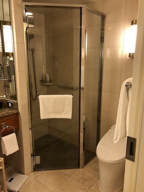 シャワールーム有り<br />海外の人はシャワーだけで済ませる人が多いそうです