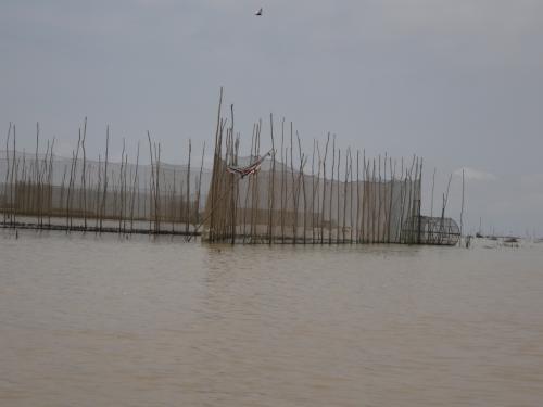 森を抜け、視界が開けました。<br />トンレサップは東南アジアで最大の湖だそうです。<br />周辺に暮らす人の主産業は、水産業と農業。<br />乾季は農業の比率が大きくなるとのこと。<br />