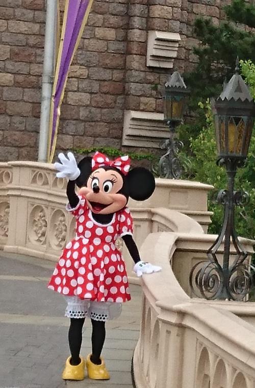 シンデレラ城前で開園前のミッキー&ミニーのご挨拶<br />友達が撮ってくれた写真
