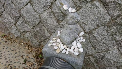 因幡の白兎の神社。ここで兎の傷を洗って上げたとか。