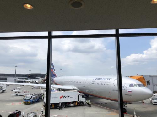 アエロフロートの機体です~旅が始まります。ワクワク。<br />機体の見かけは新しいですが、中は・・なかなかの年季ぷり。<br />大切に使われているのですね・・・<br />2-3-2の2の座席の一番うしろ(正確には、一番後ろは<br />後方右側は乗務員座席のため、CAの方がいらっしゃらないときは<br />倒したい放題で快適でした。)