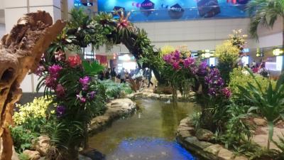 チャンギ空港到着。<br />何て綺麗な空港なんだ~