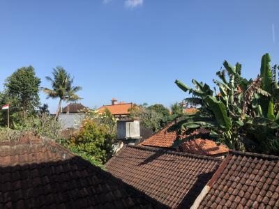 ウブドの家々の屋根が見えます。