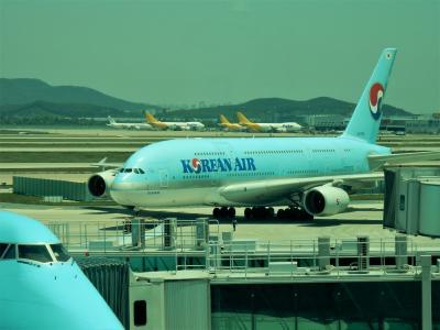 最大の旅客機A380