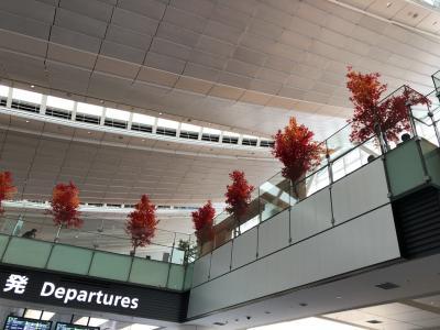 羽田空港は紅葉になってました。