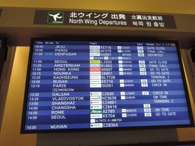 11/23(金)<br />自宅を午前8時半に出発して、総武線快速電車で成田空港へ。<br />9時45分には成田空港に到着して、まずはツアーに付いていた片道スーツケース無料の宅配で送ったスーツケースを受け取り。<br />両替も済ませて、旅行会社の受付開始を待ちます。<br />受付を済ませ、もらったEチケットでようやくアエロフロート航空カウンターでチェックイン。<br />なんとか通路側を確保して、ほっと一息です。<br />