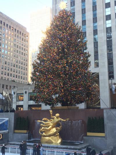 ロックフェラーのクリスマスツリー。早朝は少なかった人も昼ごろからは一方通行で大混雑。<br />