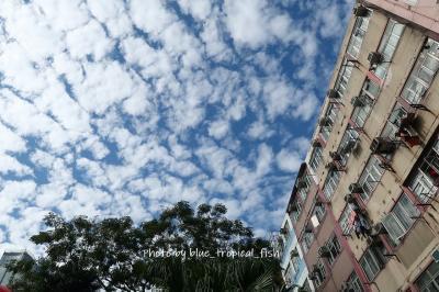 少し青空が見え始めた午後。荃灣の家を出ました。