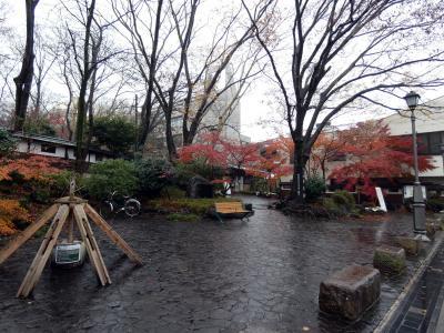 三島駅南口すぐの三島楽寿園