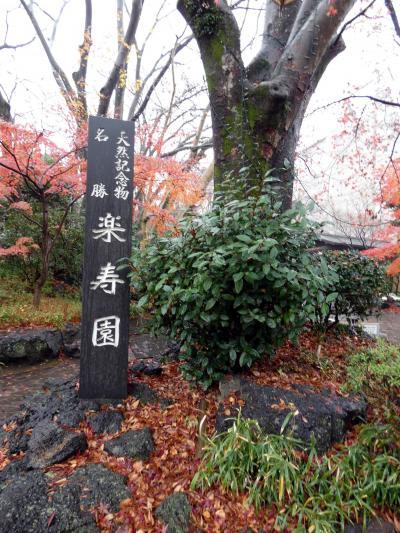天然記念物 名勝 楽寿園碑