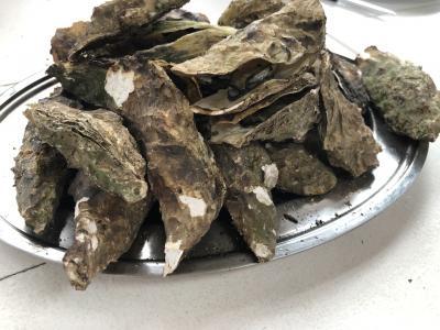 焼き牡蠣 蒸し牡蠣 食べ放題