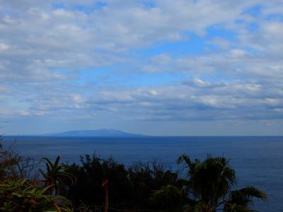 左に見える伊豆大島。<br />東京からの距離は約120km。<br />今頃は椿が咲きほこっているのでしょう。