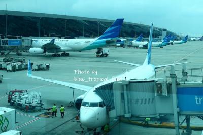 ○ スカルノハッタ国際空港<br /><br />12時25分。<br /><br />まもなく搭乗開始。<br /><br />第三ターミナルの国内線はガルーダインドネシア航空だけなので、窓の外を見るとガルーダインドネシアの機体がずらっと並んでいました。