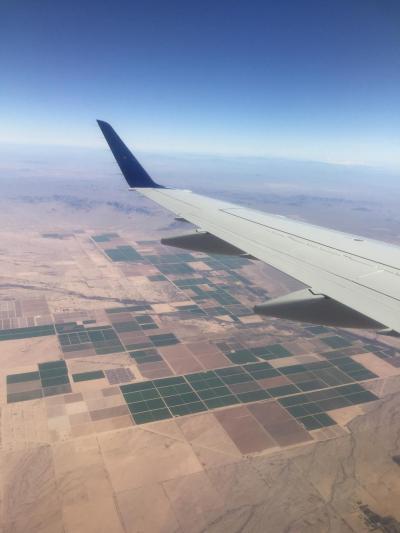 アリゾナが見えてきました。さすがにカリフォルニアとは違う景色です。