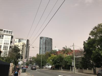 本日は涼しくて気持ちがいいのですが、朝は空の色がこんな色でした。変なの~。