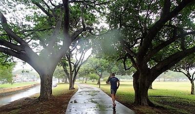この日は朝から日本の梅雨時のような雨がしとしとと降っていました。<br /><br /><br />朝早い時間のアラモアナパーク。<br />時折通り過ぎるランナーさん以外誰も居ません。<br />とっても静かな朝の雨を楽しみました。<br />