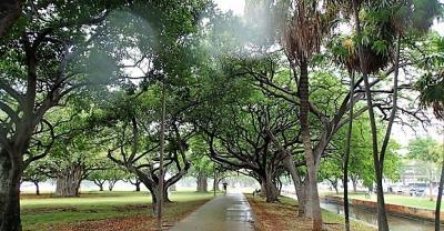 今日は一日雨降りなのでしょうか?滞在日は後二日だけです。貴重な一日を雨を眺めて暮らすのもちょっと残念ですね。<br />