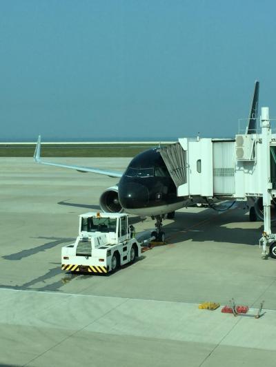 スターフライヤー台湾便がなかなかヨロシイという情報が多いのでわざわざ北九州空港へ。片道のみ。<br /><br />帰路はいつもの赤組。