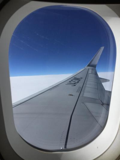 機内持ち込み30Kまでオッケー。機内食やビール、飲み物もFREE。<br /><br />CAさんも感じがよく満点。いつもは赤組に乗るがレガシーの航空会社の機内食より美味しい。真面目に作ってある。<br /><br />機内食はブロイラーの餌のようなものと割り切っている身としては嬉しい。