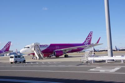 日本横断旅の2日目は大阪から関西空港へ移動して、<br />peach(MM/APJ)に搭乗し<br />関西空港(KIX)7:45発~新石垣空港(ISG)10:10着 へ向かいます。<br />この路線は比較的遅い時間になるので、朝1の大阪を電車で向かえば1時間以上前に空港に余裕を持っていく事が出来ます。<br />また、関西空港の第2ターミナルの国内線はpeachの専用と言って良い様なターミナルなので、<br />他の空港に比べて間違えることもないと思います。<br />peachは搭乗券の印刷が必要なので、<br />空港の自動チェックイン機を利用して発券しないといけません。<br />便数の割に機械が少ないので、時間帯に寄っては待ちますので、<br />余裕を持ってご利用ください。
