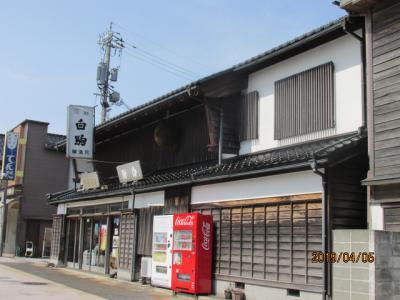 重蔵神社を出た先のわいち通り中ほどに先程のお神酒、白駒の醸造元があった。一度は飲んでみよう。