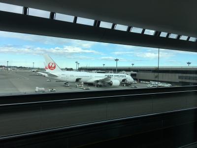成田からヘルシンキに向かいます。<br />歩く歩道を使って進むと飛行機が見えてきました。<br />昔はここ電車?で移動してたような。<br />
