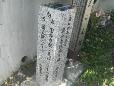Lrg 60095540