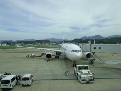 今回、乗った飛行機です。タイ航空