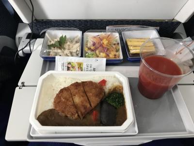 行きの機内食。海老のカレーだったかな。<br />今回は揺れがすごくてスープやホットコーヒーが貰えなくて、飲み物はトマトジュースにしました。