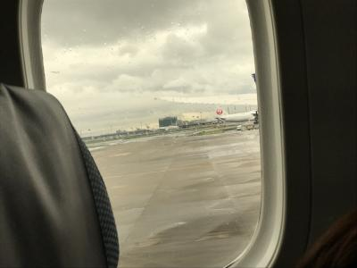 7/4 1日目<br />7:30頃羽田空港国際線に到着。<br />予約していたWi-fiを受け取りました!<br />8:00頃に友人と合流して、チェックインと<br />荷物を預けたらぶらぶらして、いざ出国!<br />問題なく出国できたので、<br />免税店をウィンドウショッピングしつつ<br />搭乗時間まで待ちました。<br />免税店を見ると、旅に出かけるんだなと<br />わくわくする気持ちが強くなるから楽しいなー。<br /><br />今回お世話になる飛行機はANA。<br />でも、出発するまでが長かった。<br />飛行機の変更で1時間遅れ。<br />飛ぶ順番待ちで20番目らしく1時間遅れ。<br />計2時間遅れて、ちょっと疲れました。<br />飛行機は前回のエバー航空の方が良かったかな。<br />