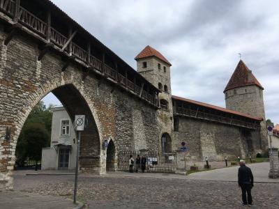聖オレフ教会へ行こうと歩いていたらタワーがたくさんあったので寄り道。<br /><br />城壁の中を歩けるみたいです。<br />旧市街地にあるいくつか歩ける城壁の中でも一番長い距離歩けるらしいです。<br />城壁を歩けるとかノーマークだった…。