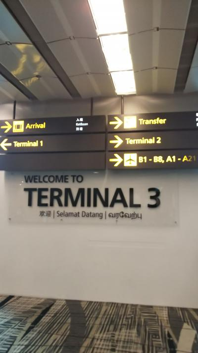 8月11日(日)<br /><br />定刻8:25のところ7:33に、羽田空港からターミナル3に到着。<br />到着が早くなったので遊ぶ時間が増えてラッキーです。<br /><br />ターミナルは到着直前に決まるらしく事前にはわからないので、どう探索するかは到着してから行き当たりばったりです。