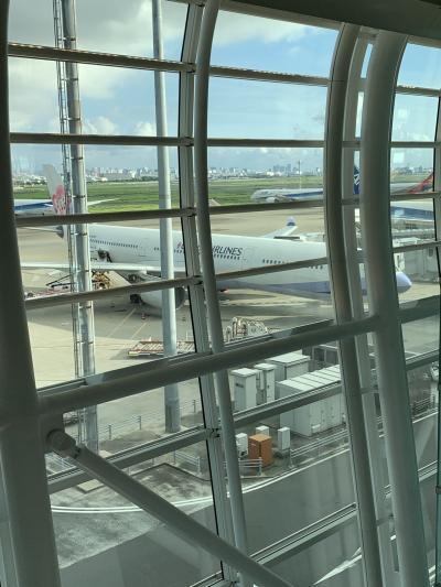 いつものChina Airlines フライト: 223 <br />羽田空港7時20分出発です! 早っ(°_°)