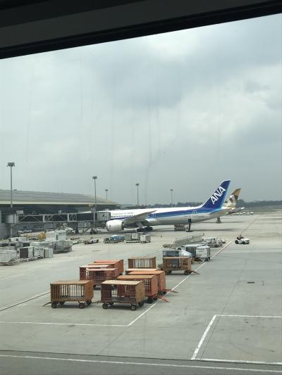 ANA886の羽田便がまだいる。こういう時間に着くのは初めてかも。