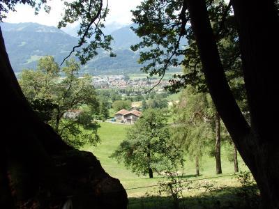 木々の間から素晴らしい風景を眺めつつ山道を進みます。