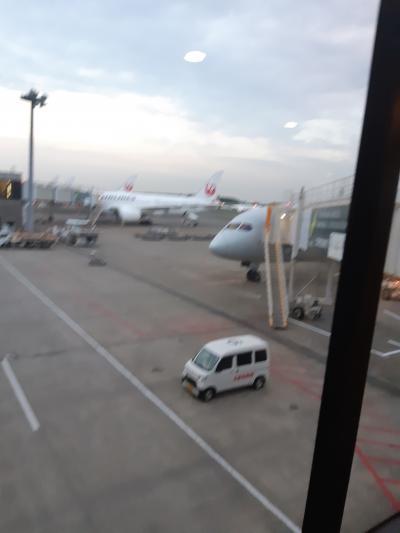 出国審査が終わりターミナルへ<br />久しぶりの国際線にワクワクします