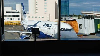 成田空港16時50分出発のオーロラ航空(機材はA319)<br /><br />乗客は9割以上ロシア人でした。日本人はあまりいなかったです。<br /><br />成田空港から週2便 新千歳空港から週5便
