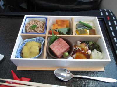 初日は、成田~ヘルシンキ~ダブリンとJAL&amp;フィンエアーで移動します。<br />JALの丁寧な機内サービスはさすがですね。機内食も美味しかったです。