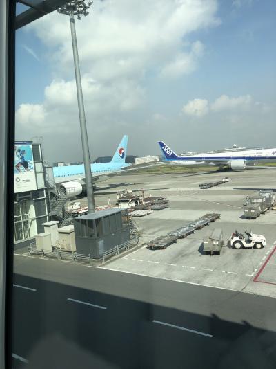 実は私、家族で毎年ハワイに行っており、家族揃ってJALマイラー(笑)<br />JAL以外を利用するのは10年以上ぶりです!<br />謎に緊張しながら搭乗を待ちます。<br /><br />左に写っている大韓航空機!<br />韓国までよろしく頼んだぞ!<br /><br />韓国旅行をキャンセルする人が多い時期でしたが、私のまわりで空席はありませんでした。<br />JAL以外ということで緊張していましたが、日本線だからかCAさんも日本語で対応してくれて安心( ´ ▽ ` )