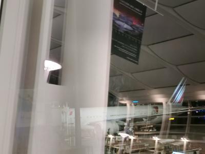 AF293便の機体。<br />18時位から国際線ターミナルにいました。<br />日本食大好きな私は、夕ご飯におでん定食を食べました。<br /><br />機内では映画「アラジン」を見ましたが後はほとんど寝ていました。<br />相変わらず寒すぎて毛布2枚必須です。<br /><br />エールフランスのアプリによると、パリには少し早めの4時17分に到着しました。<br />さて、最大の不安といっても過言ではない乗り継ぎ。<br />「Correspondances(乗り継ぎ)」の表示を探します。<br />ところが。<br />私が事前にエールフランスのホームページで調べていた情報は全く役に立ちませんでした。<br />到着便が早すぎて、乗り継ぎと到着のルートが分かれていなかったのです。<br />フランスに来た時と全く同じように入国審査を受けて、普通に出口へ向かって、到着したターミナル2Eから2Fに移動するだけ。<br />乗り継ぎっぽいルートはことごとく閉鎖されていて、我々がそちらに行きたそうにしていると、空港職員にも警察官にも「ここから先は閉まっているからあちらに向かってください」と言われました。<br />なので、行きはとても簡単でした!(帰りは通常通りだったので少し困りました)<br /><br />拍子抜けしつつあっという間に2Fにたどり着き、「え、早すぎる。これからどうしよう」と思いました。<br />ビルバオ行きの便は7時55分発です。<br />2Fでどこに向かえば良いかわからなくて、エールフランスの方に聞くと、荷物を預けないのなら手荷物検査に行ってくださいと言われました。<br />とても素敵な笑顔で、我々からの質問に失笑することもなく意図を汲んで下さり、この方のとんでもないレシーブ力により奇跡的に成立したコミュニケーションですよ。<br />あぁ、乗り継ぎだけど普通に入国して一度外に出たことになるからまた手荷物検査を受けるんですな。なるほど。<br />そしてパリに私のスーツケースが到着しているのか、そして私が乗る飛行機にちゃんと載せられるのか心配で仕方なかったです。<br /><br />しかし時間はたっぷりある!!買い物だー!!