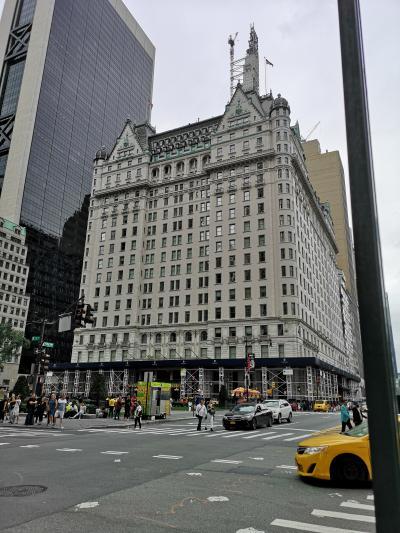 プラザホテルです。セントラルパークの南東角、5番街に面しています。<br /><br /><br />