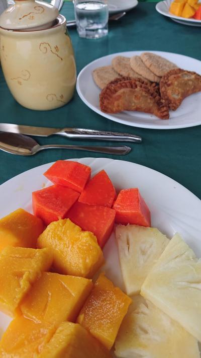 乗馬を一番楽しみにしていただけに、ショック!<br />ど~しよ~っと思いながらの朝食。<br />テラスで頂きました。<br /><br />旅行中、ここの朝食が一番充実していた。<br />ジュース、フルーツ、卵料理、パン、チーズサンド、クッキー、コーヒー。<br />もちろん、食べきれませんよ~。<br />ジャムを挟んだ餃子のようなお菓子を息子Bは気に入っていた。<br /><br />がっかりで、だらだらと朝食をしていたら、雨が小降りになってきた。<br />止むんじゃね?<br />っと、とりあえずガイドのところに行くことにし、急いで若女将に電話をかけてもらった。<br /><br />「なんかハポンが行くって言っているから、どうするよ。」な感じだったけれどもw