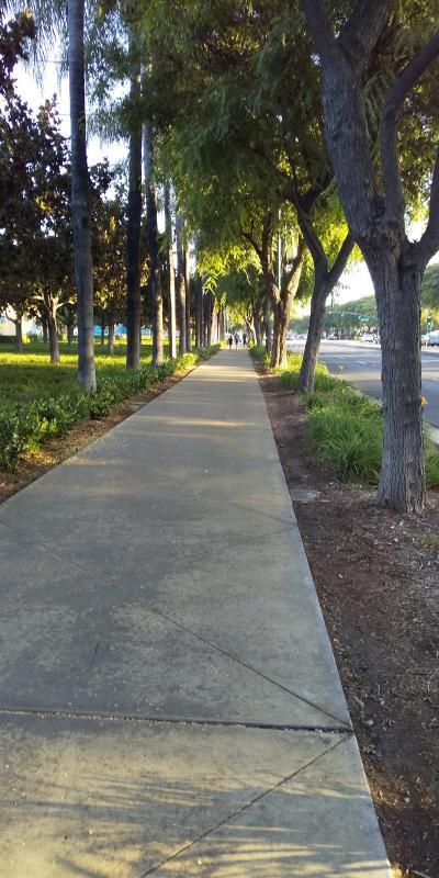 お待ちかねのディズニーランドへ出発です.<br />ホテルから,このような歩道を通って,徒歩で約15分です.
