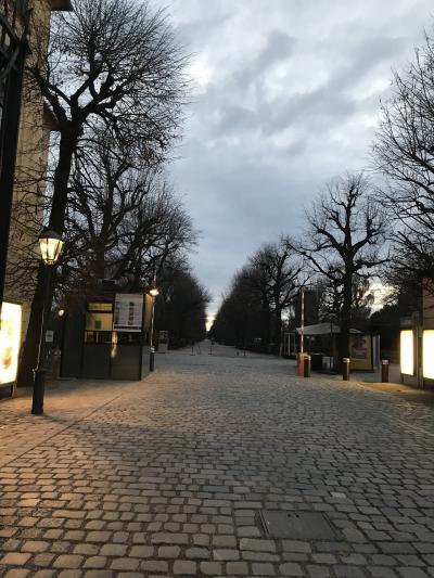 シェーンブルン宮殿の公園の開園は6時半です!早いですね。頑張って7時過ぎには到着しました。地下鉄Hietzing駅からヒューツィング門へ。<br /><br />冬なのでなかなか陽が昇りません。寒いです。諸事情により、比較的寒い時期に旅をするようになって思うのは、緑少ない!寒い!です。