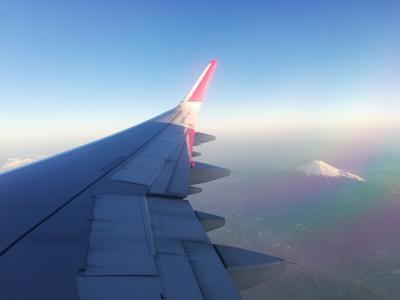 通路側希望だけど満席で窓際席しかなかったが思わぬご褒美。真白い富士山!美しい~