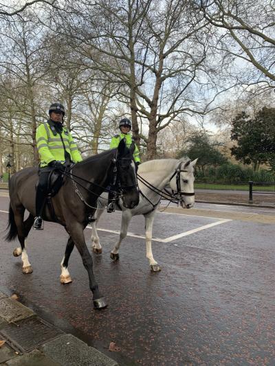 3日目。<br />衛兵交替式を見るためにバッキンガム宮殿に向かいます。<br />途中に出会った白黒の馬に乗った警官の方。