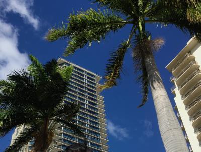 ハワイにやってきました