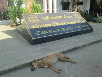 カンボジアのPoipetイミグレを出て、タイ側のAranyaprathetイミグレでタイの入国手続もスムーズに済ませる。<br />カンボジアの旅が終わり、タイの観光が始まる!<br />さて、タイのイミグレを出たところ、初めに出迎えてくれるのは、このやつ…<br />ちなみに、犬の後ろの施設は「第12非常勤機動連隊」。