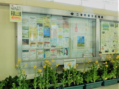 横浜駅から二宮駅までJR湘南新宿ライン快速で43分。<br />改札を出ると観光案内の方が出迎えてくれ、チラシをいただく。<br />