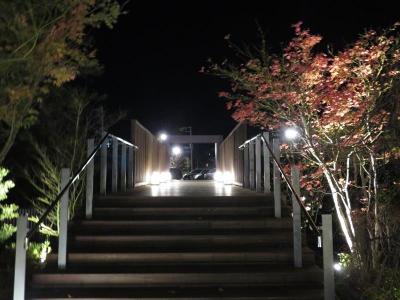 通路の橋も、赤く燃える葉っぱも美しくライトアップ。
